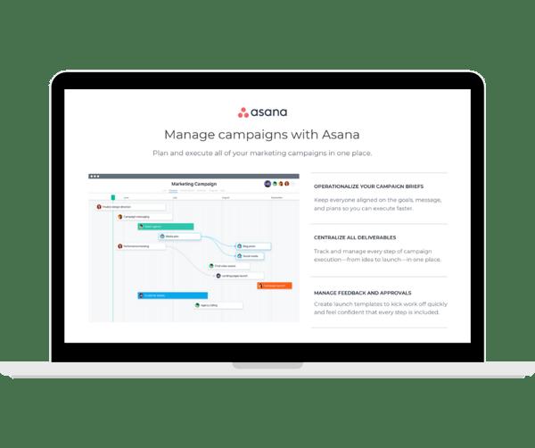 Asana - Marketing Camapgins -  Transparent - Laptop Landscape
