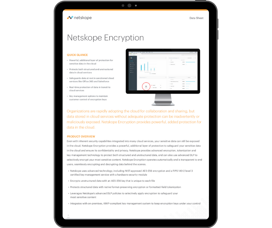 Netskope Encryption - Transparent - Ipad Portrait