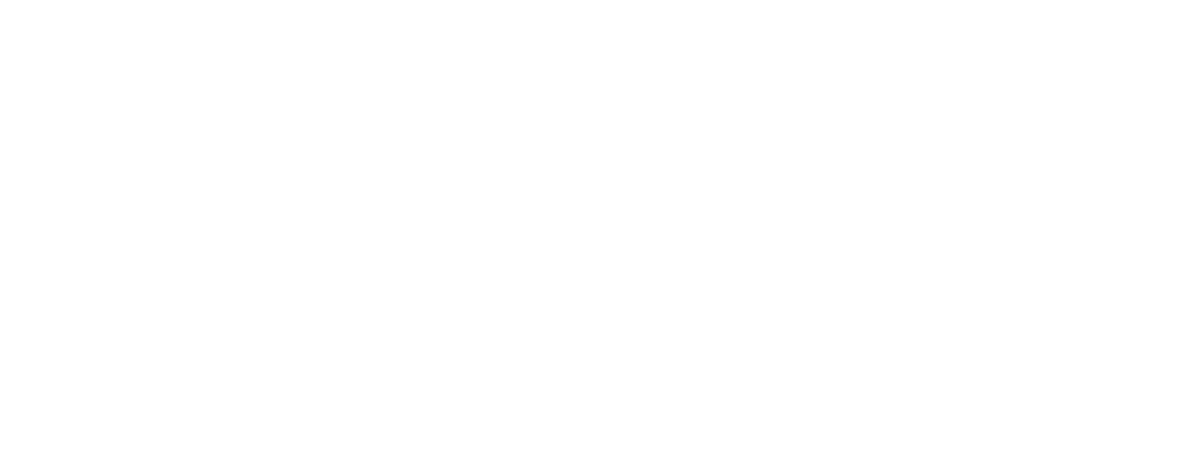 Solution Provider - Wide - Alt